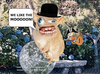 spongmonkey.jpg